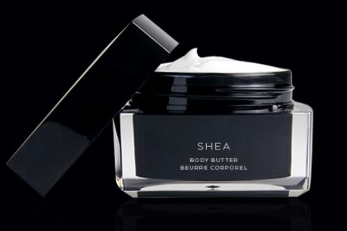 Shea — body butter