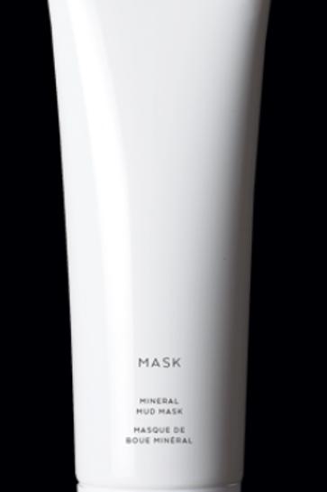 Mask: mineral mud mask