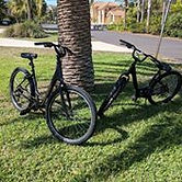 New Bikes.jpg