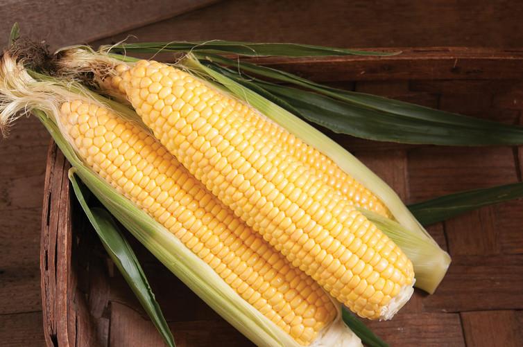 One word...Corn