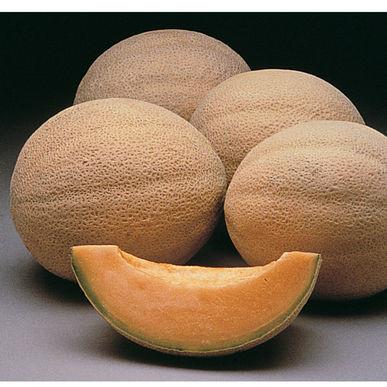 Muskmelon or Cantaloupe?