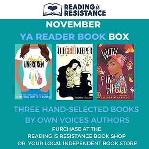 November YA Book Box.png