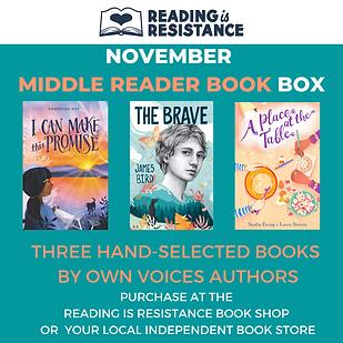 November Middle Reader Book Box.png