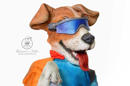 dingo_the_mountain_dog.jpg