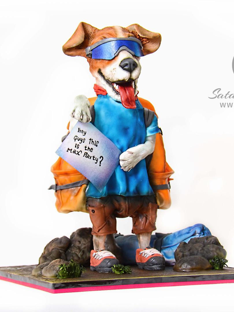 dingo_the_mountain_dog_1.jpg