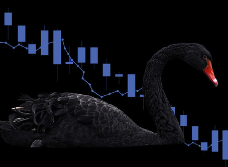 A Tale of Two Black Swans