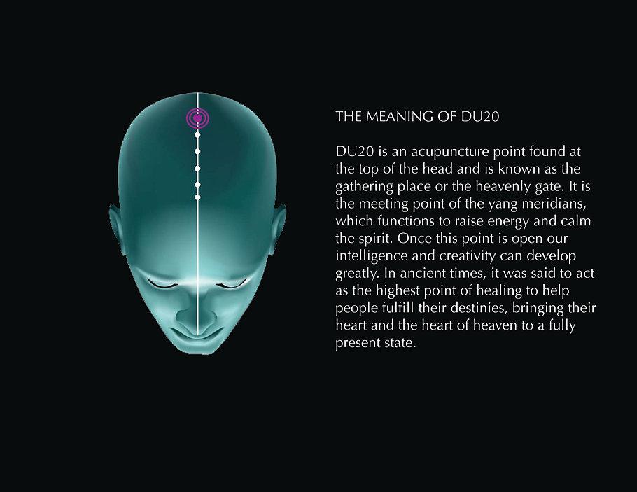 meaningDU20.jpg