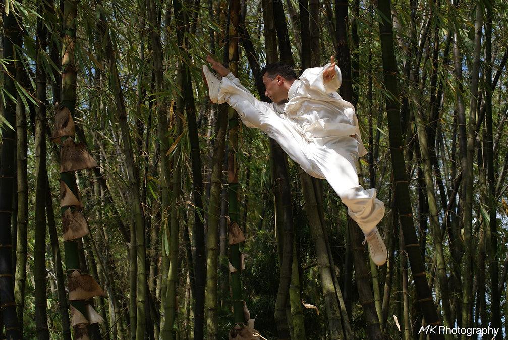 Chen Tai chi at Morikami Park
