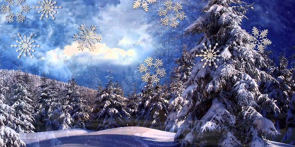 Зимняя сказка (0+)