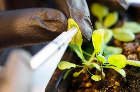 Linha Nano Agro é destaque em matéria da Finep