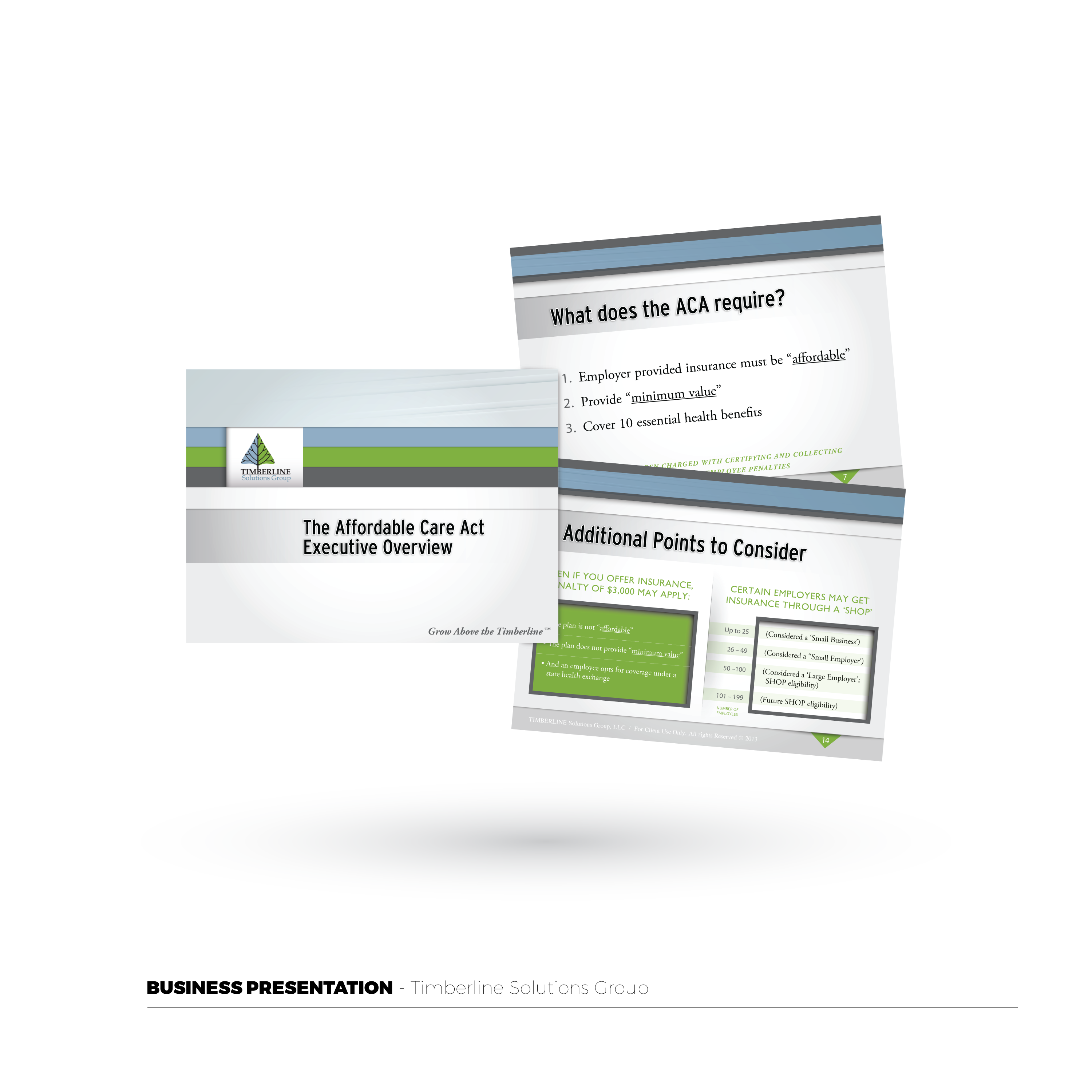 Timberline Solutions Group Presentat