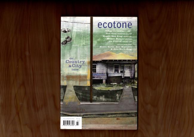 Ecotone Magazine