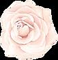 rose24.png