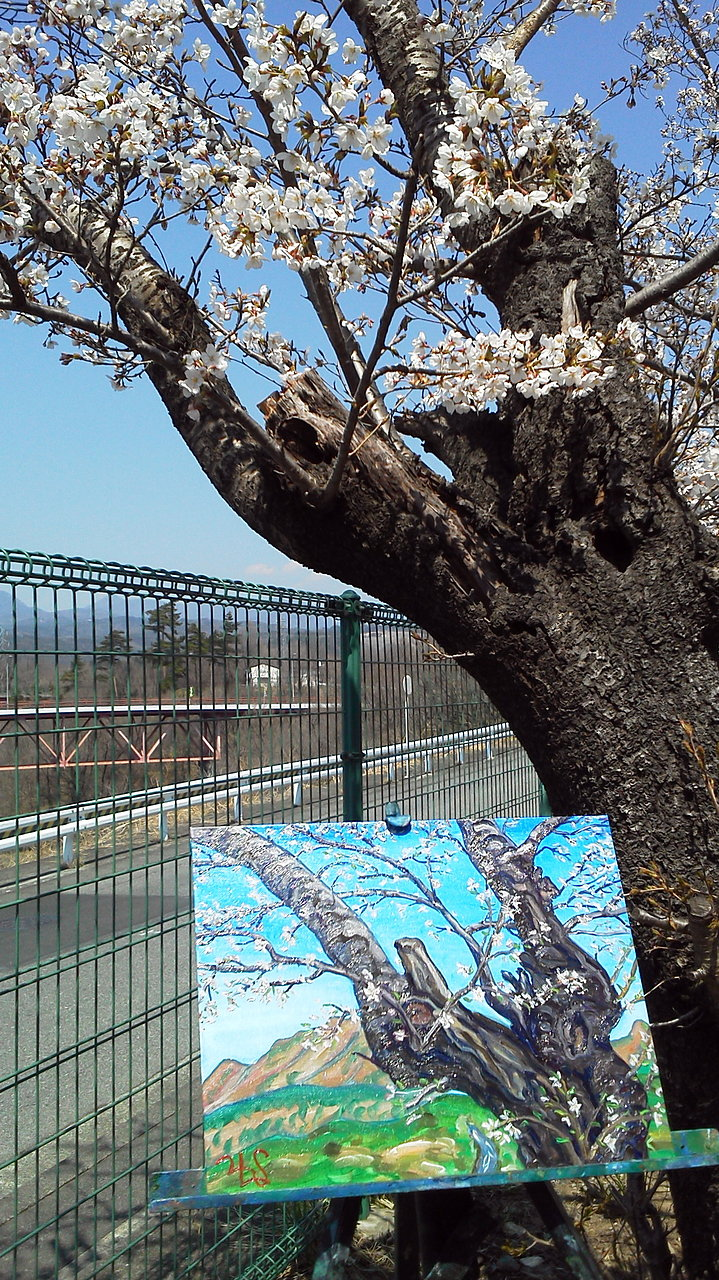 Tree at Futaba School