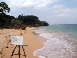 Iriomote - Okinawa