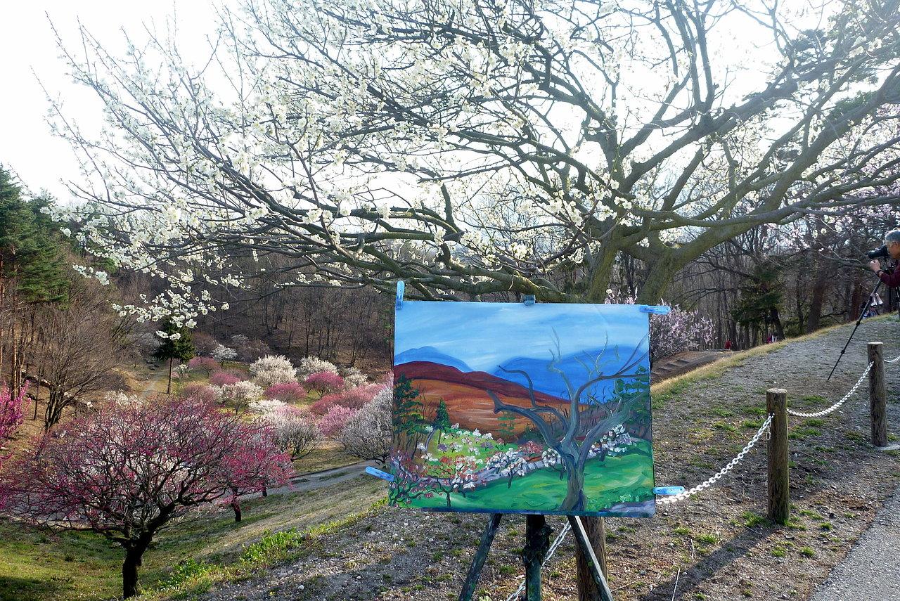 Shikishima Plum Park