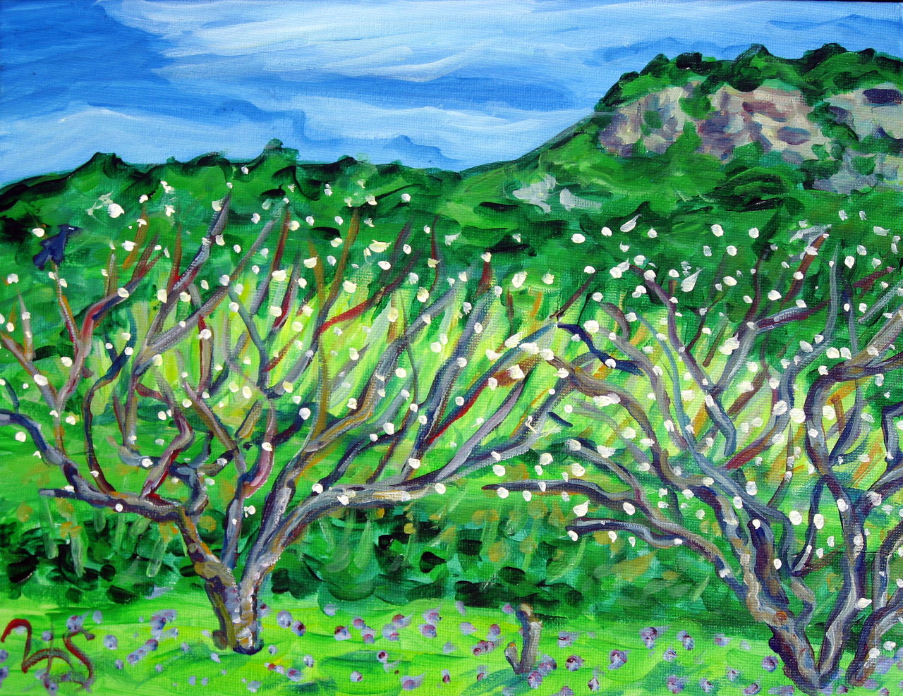 Nejime Plum Trees - Spring