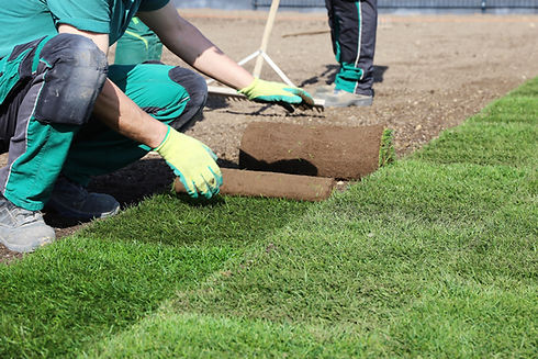 turf being lay
