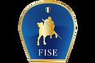 logo_fise.png