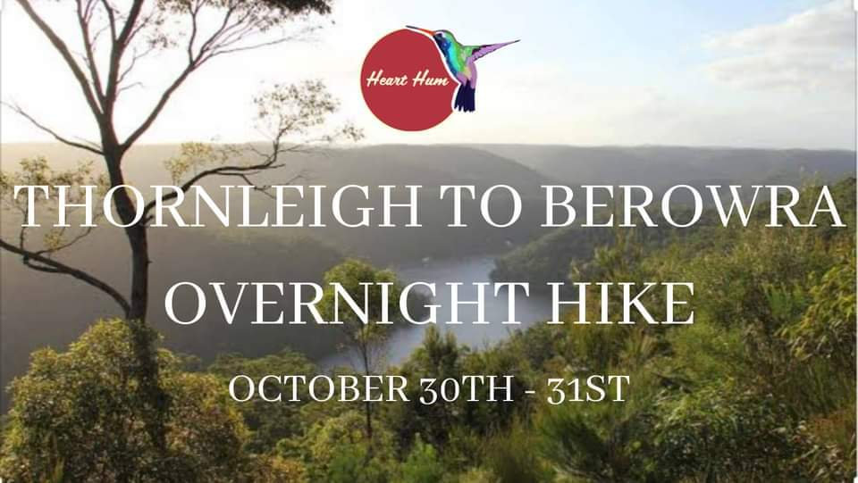 Great North Walk - Thornleigh to Berowra