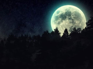 Come and hike under the full moon..