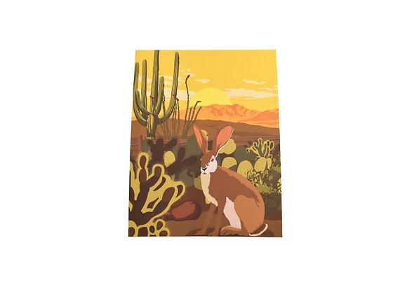 VEN | Print | Southwest Jackrabbit | Tucson Desert