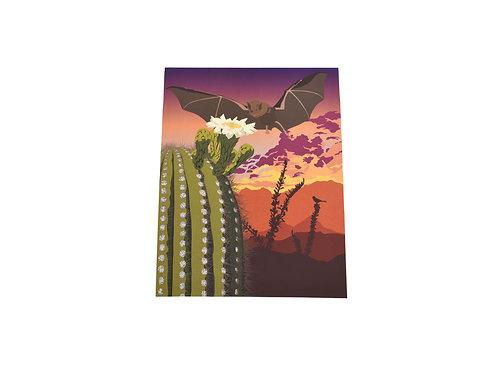 VEN | Print | Southwest Bat | Tucson Option