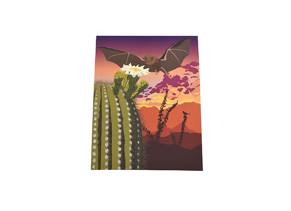 Print | Southwest Bat | Tucson Option