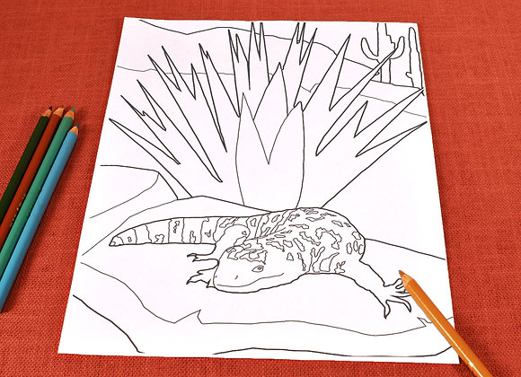 Coloring Page | Gila Monster