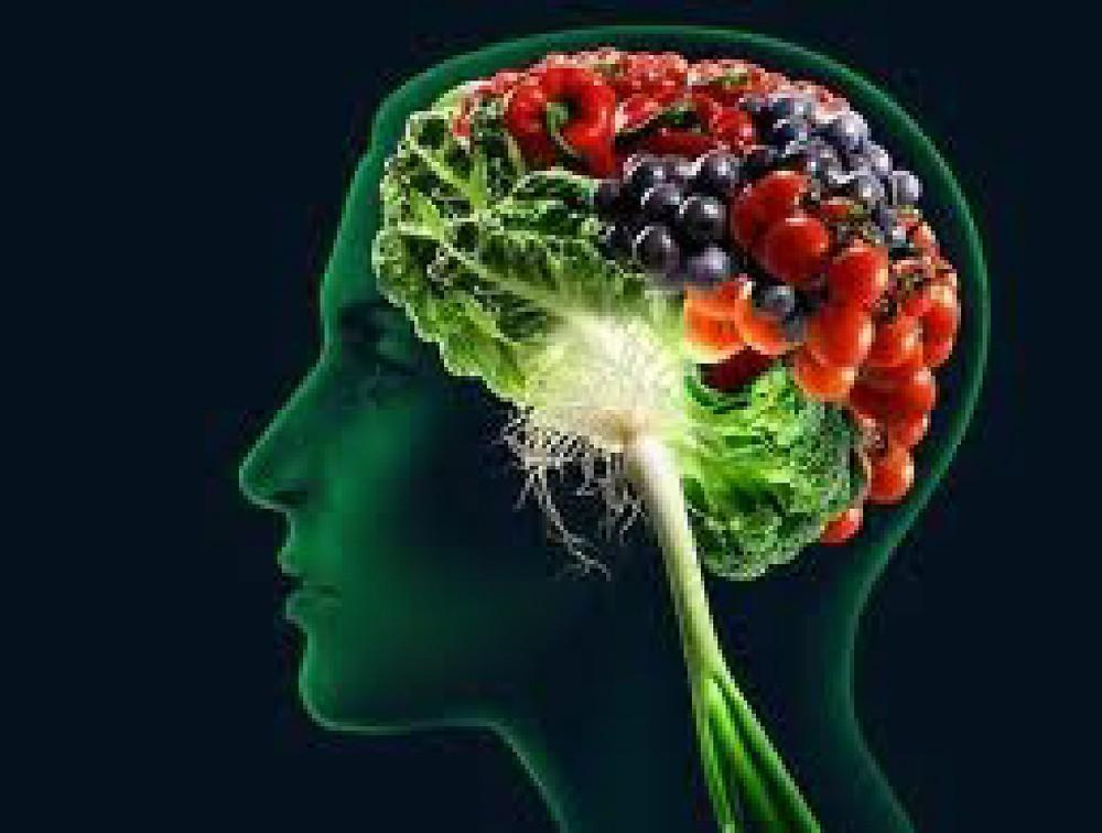 plants in a human brain