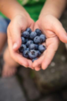 food-hands-fruits-blueberries-172073.jpg
