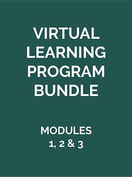 Virutal-Learning-Program-Bundle-01.jpg