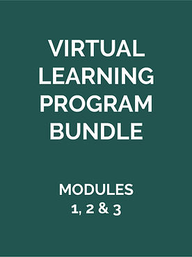 Virutal-Learning-Program-Bundle-01.jpg