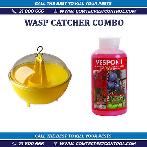 Wasp Catcher Combo