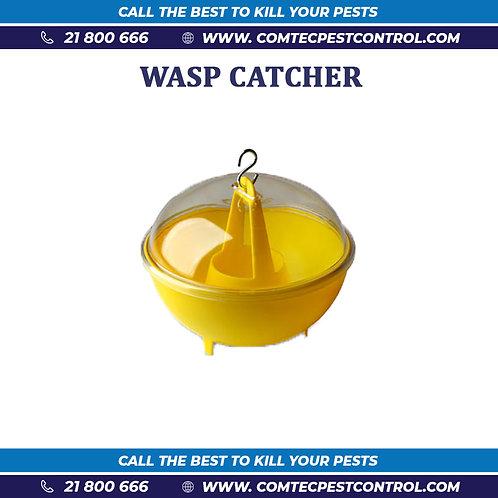 Wasp Catcher