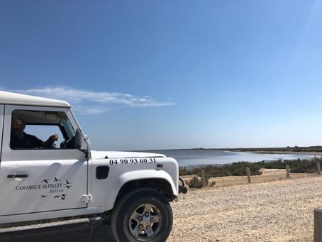 Bord des étangs
