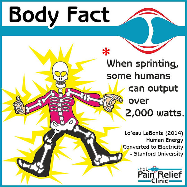 Body fact about sprinting