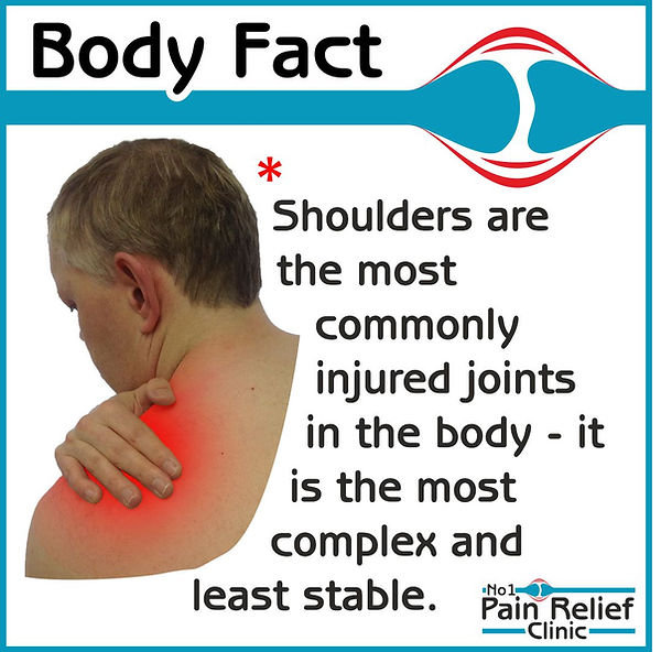 Body Fact - shoulders are the most commonly injured joints and most complex