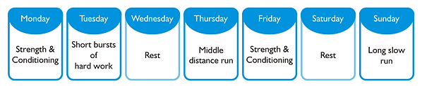 A marathon preparation training example