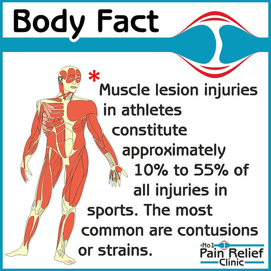 Body Fact - Muscle lesion