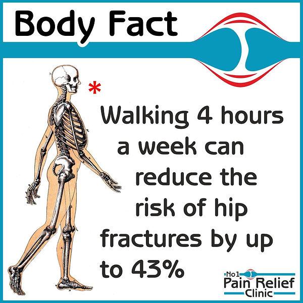 Body fact about walking