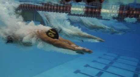 wave_wheat_swim_meet_jh003_t460.jpg