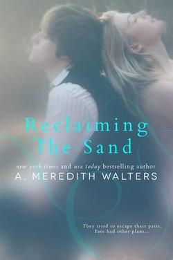 Reclaiming The Sand.jpg