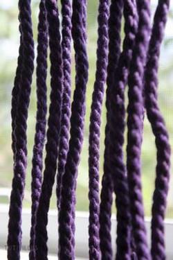 purple hemp.jpg