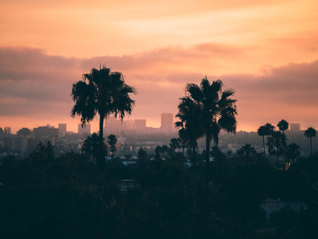 Immigration Options and State-Sponsored Incentives for Companies Doing Business in California