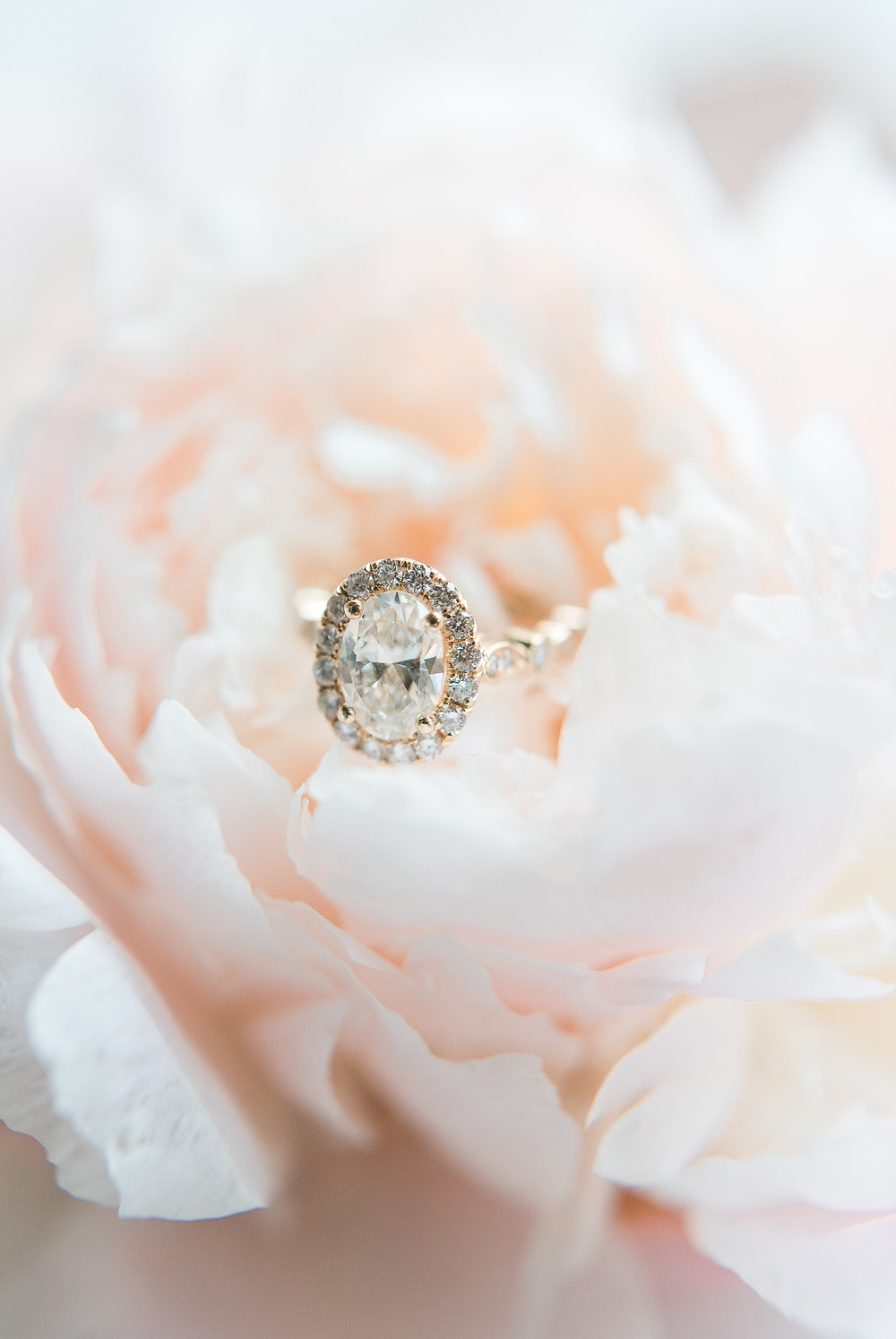 blue-mountain-vineyard-wedding-venue-outdoor-wedding-ceremony-rosegold-ring-the-mrs-box