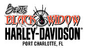BWHD-logo-new-spider-cmyk high res.jpg