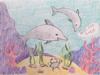 Dolphin Family - K4d