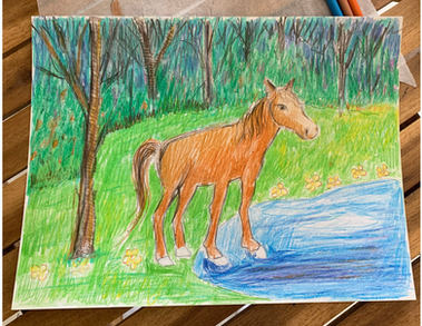 Horse Drawing - sd5