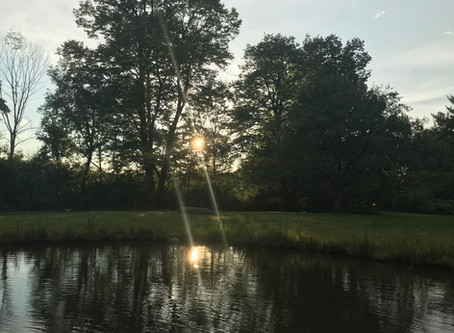 Alchemy on the Pond